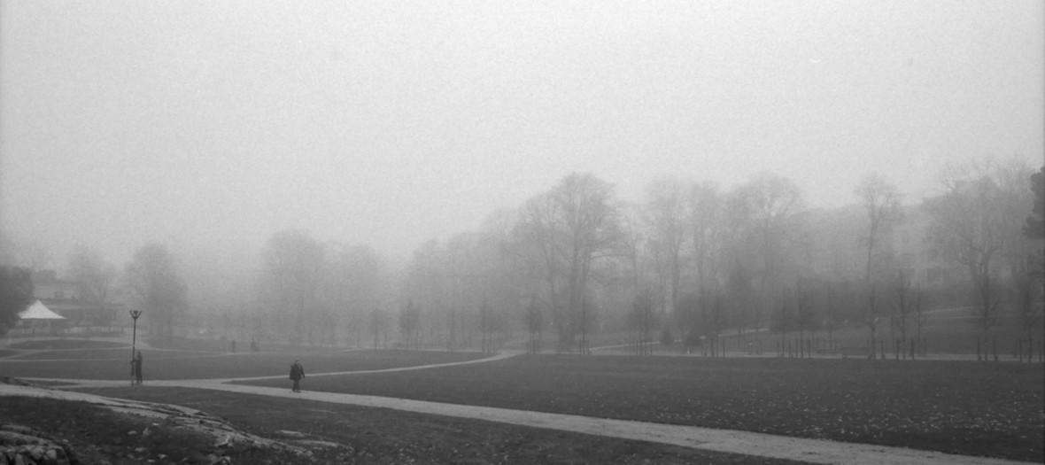 Foggy 2